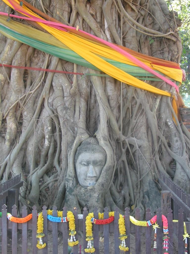 riverside buddhist personals Inpatient drug rehab macon ga - explore treatment options and professional care for addiction [ inpatient drug rehab macon ga ].